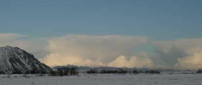 Polart lavtrykk sett fra land. (Foto: ArcChange)