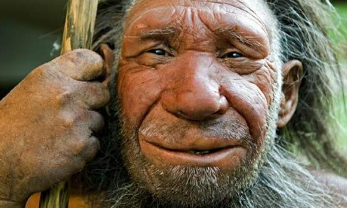 """Neandertaleren """"N"""" er en hyggelig kar som bor i museet i Neanderthal i Tyskland. (Foto: Neanderthal Museum, Mettmann)"""