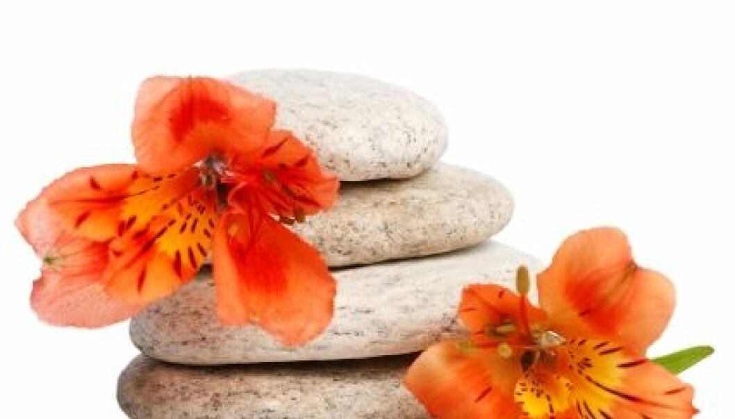 Terapi med blomster og stein