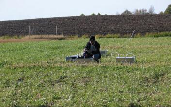 Doktorgradsstudent Shahid Nadeem på feltarbeid. (Foto: Peter Dörsch)