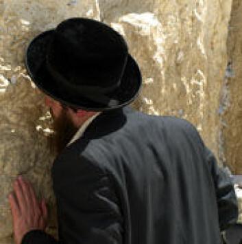 En jødisk mann ber ved Klagemuren. (Foto: Wikimedia Commons)