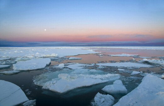 Speed of warming in the Arctic comparable to abrupt climate change events known in the distant past