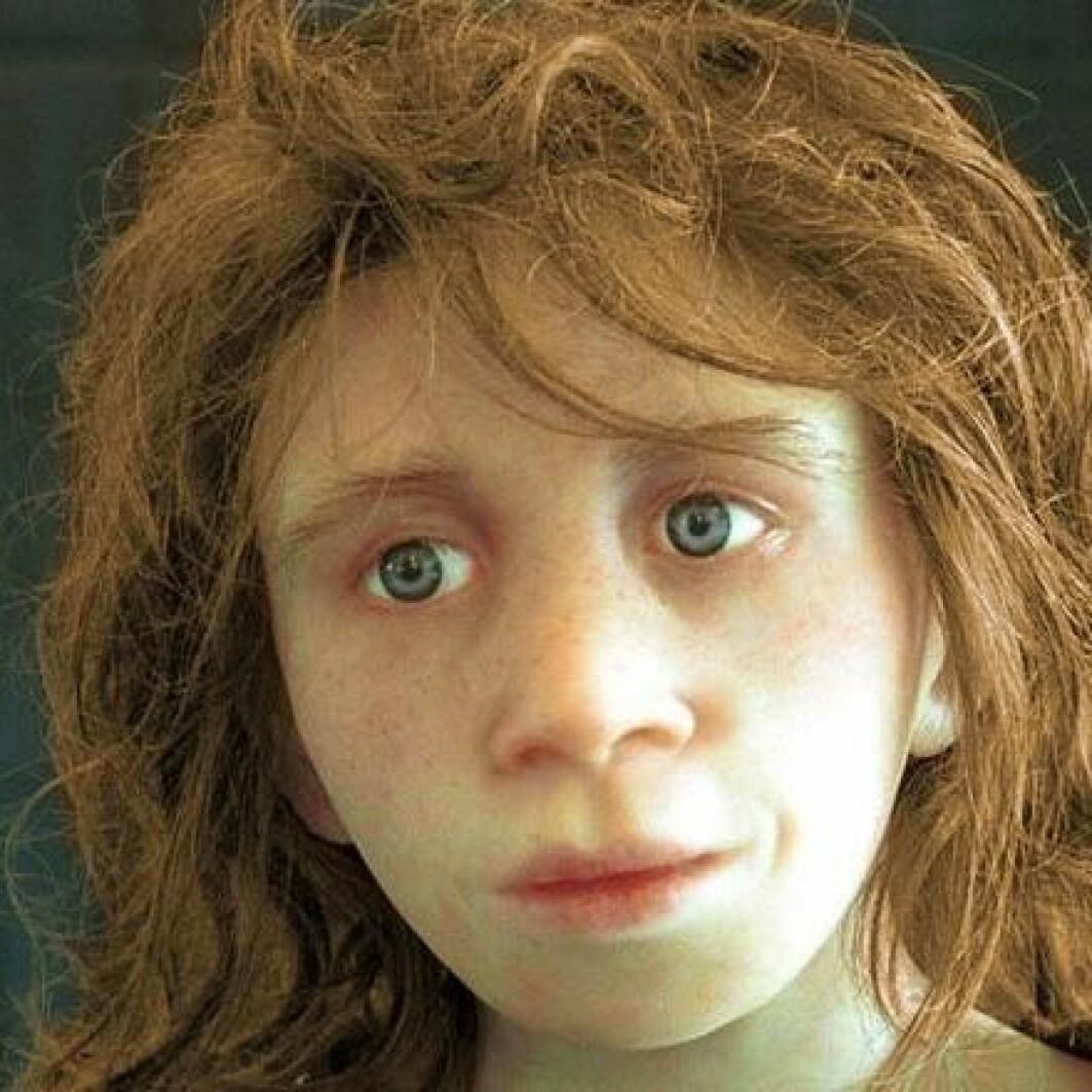 Du har hud og hår fra neandertaleren