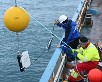 """""""Undervannsriggen som måler temperatur og havstrømmer blir satt ut i Isfjorden på Svalbard. (Foto: Eva Therese Jenssen/UNIS)"""""""