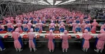 Industrien bidrar til at Kinas økonomi vokser raskere enn Indias.  (Foto: NUPI)