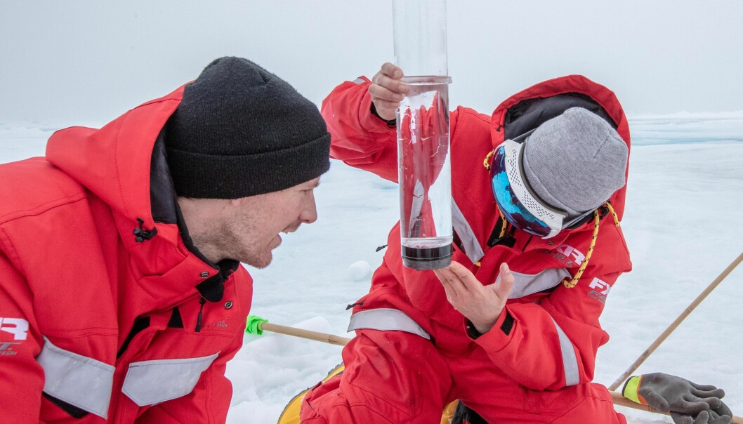 Oliver og forskerteamet hans ser på biologien i vann og is i Polhavet