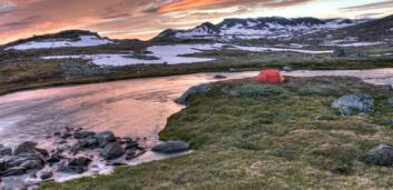 Før bodde fisketurister i telt. Nå bor stadig flere i høystandardhytter langs elvebreddene. (Foto: Shutterstock)