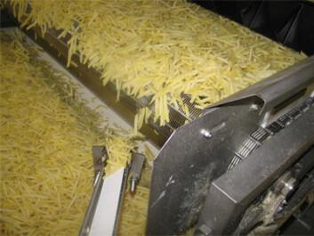 Poteter kan behandles med melkesyrebakterier slik at det dannes mindre akrylamid ved fritering. Foto: Zeracryl AS