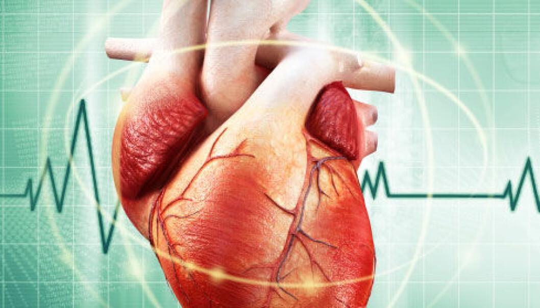 Rask nedkjøling gir mindre skader på hjertet