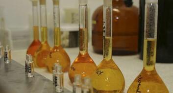 I kampen om omega-3-ressursene er det viktig å ha fokus på kvalitet og optimal bruk – det er eneste vei til nok omega-3-oljer i framtiden. (Foto: Kjell J. Merok/Nofima)