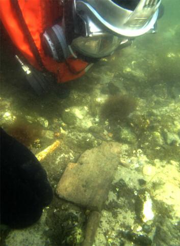 Arkeologene fisket opp åren iført dykkerutstyr. (Foto: Claus Skriver)