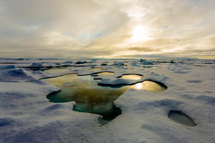 """En smeltevannsdam på polisen fotografert under """"Polarstern""""-ekspedisjonen i 2012. (Foto: Stefan Hendricks, Alfred Wegener Institute, Helmholz Center for Polar and Marine Research)"""