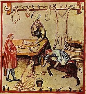 Slakteprosessen fra en illustrert middelalderbok om helse.
