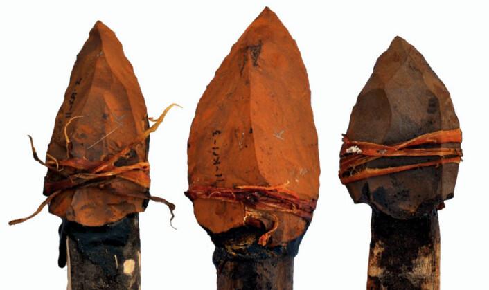 Spissene ble festet på trespyd med kvae fra Akasie-trær og tråd laget av plantefibre. (Foto: Jayne Wilkins, University of Toronto)
