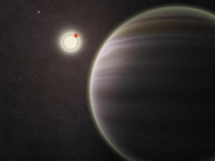 PH1 er seks ganger så stor som Jorda, og kretser rundt to stjerner som er 1,5 og 0,41 solmasser. (Foto: (Ill.: Haven Giguere/Yale))