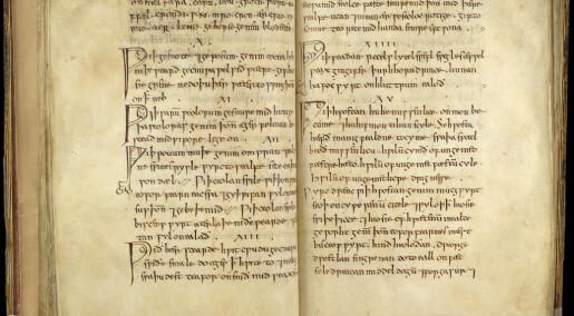 Forskere testet salve-oppskrift fra middelalderen