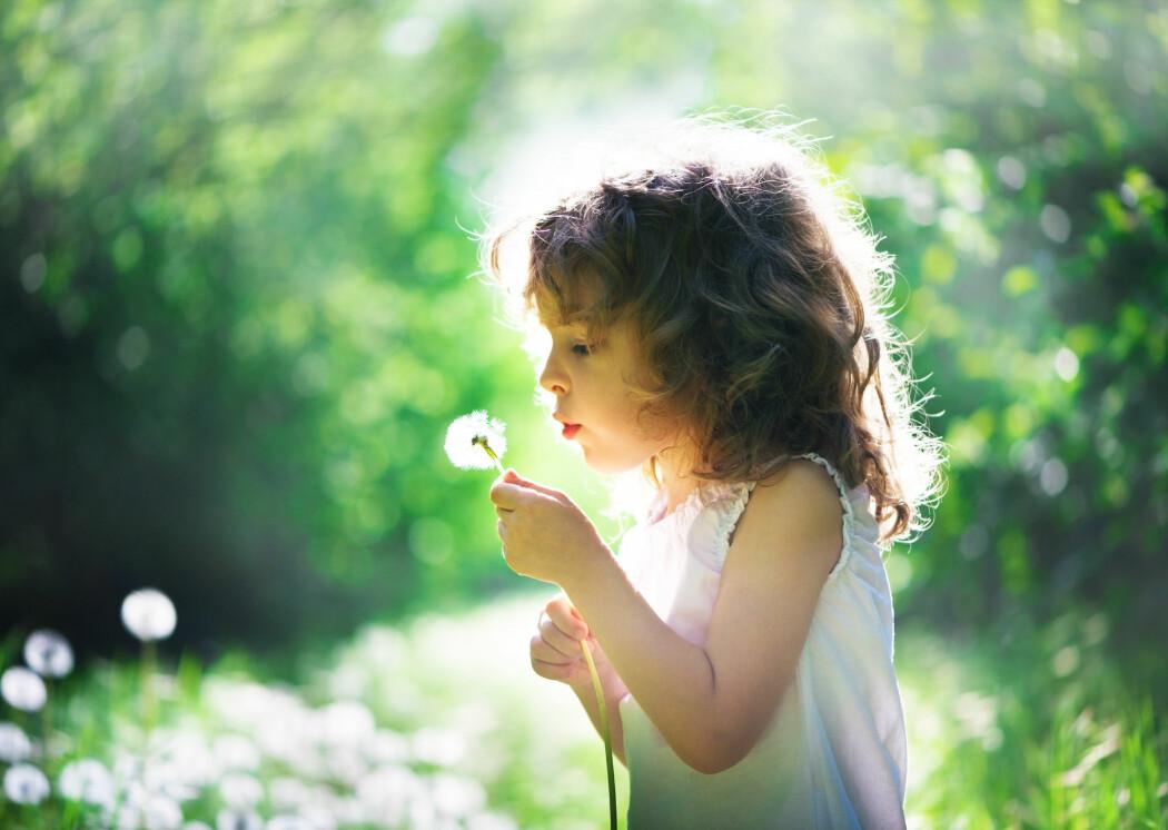 Selv med alle de positive virkningene av naturopplevelser, finnes det også skyggesider.