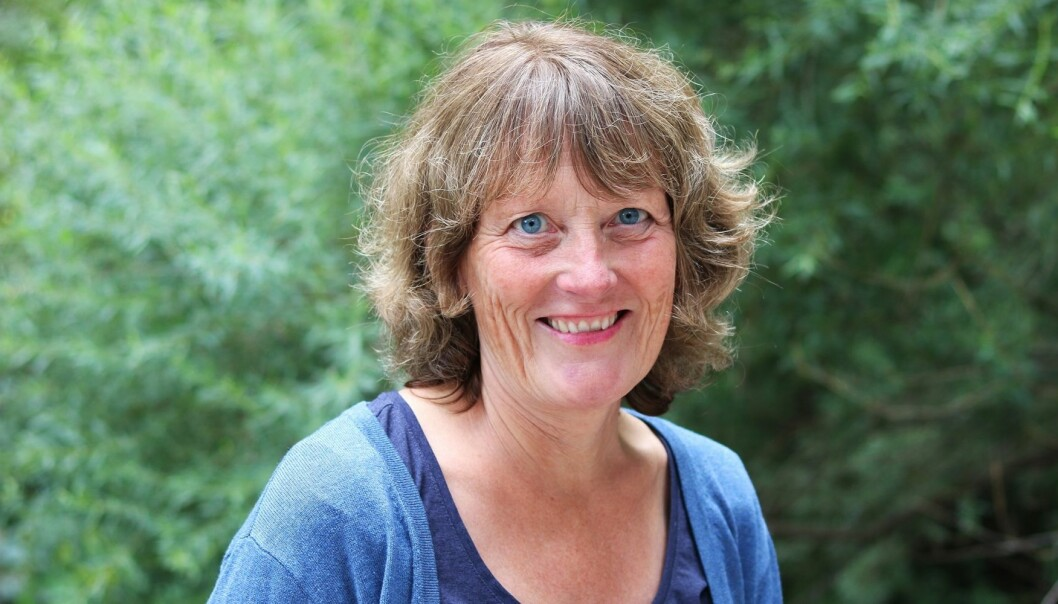 Reidun Norvoll ved Arbeidsforskningsinstituttet, OsloMet er prosjektleder.