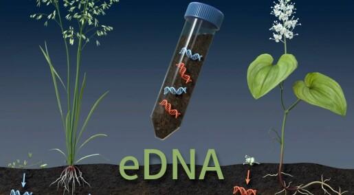Norgesnaturen blir kartlagt med DNA-analyser