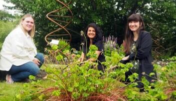 """Forskerne Mari Elisabeth Engelstad (t.v.), Maria Ariza Salazar og Eva Lieungh i typisk jordprøve-stilling: På huk i Botanisk hage, foran det berømte """"lommetørkletreet"""" og en overdimensjonert DNA-spiral i metall."""