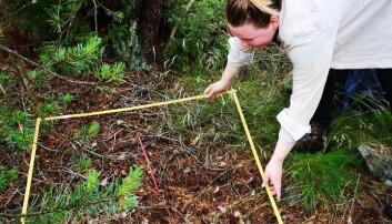 Mari Elisabeth Engelstad under feltarbeidet, som foregikk på Hvaler.