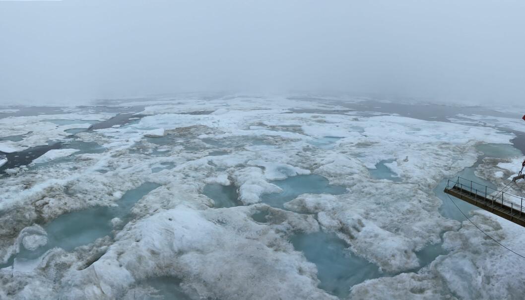 Isflaket MOSAiC-ekspedisjonen hadde segla i Polhavet med sidan ifjor braut opp i juli – no leiter dei etter eit nytt!