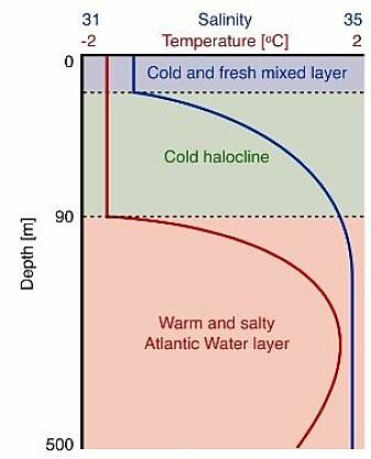 Slik fordeler vatnet seg i Polhavet vanlegvis. Kaldt ferskvatn øverst ved isen, det såkalla halokline laget under det, som isolerar det varme og salte vatnet frå Atlanterhavet lengre nede.