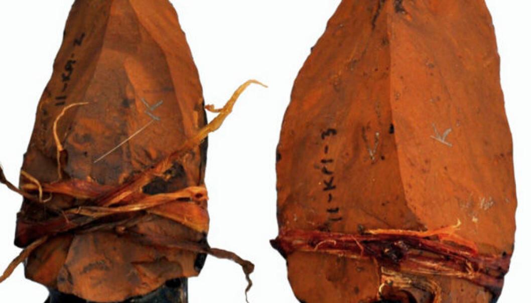 Spissene ble festet på trestokker med kvae fra Akasie-trær og tråd laget av plantefibre. Jayne Wilkins, University of Toronto