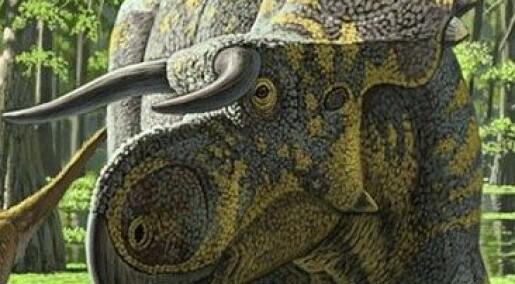 – Vi ble enormt overrasket over denne dinosauren