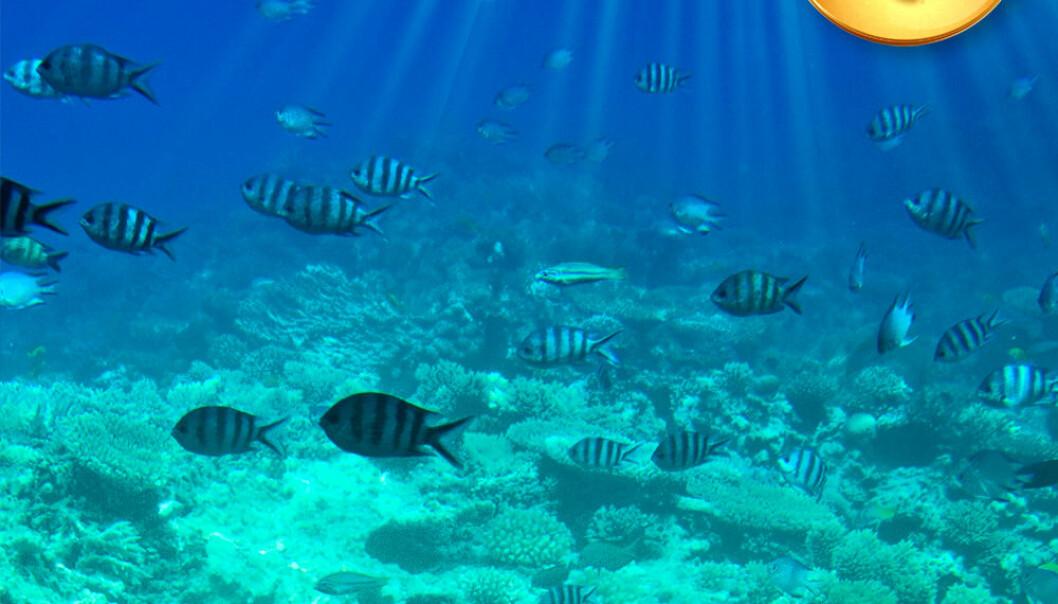 Lyd under vann