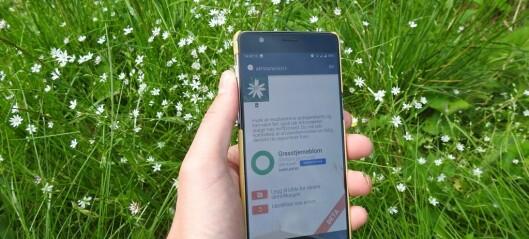 Appen Artsorakel gir deg navnet på blomster og dyr