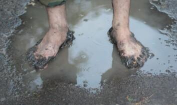 I og med at huden på føttene våre også rynker seg, tenker forskerne det kan være en måte å forbedre grepet for barbeinte føtter på vått underlag. (Foto: Colourbox)