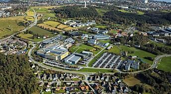 Satser stort på campus i Stavanger