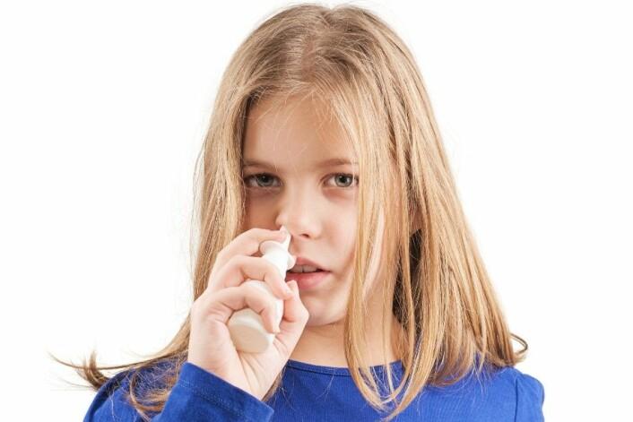Når mus får gliadin i nesespray, får de lavere risiko for type 1-diabetes. Forskerne håper at de kan utvikle en lignende kur til barn med høy risiko for å utvikle sykdommen. (Foto: Baronb, Microstock)