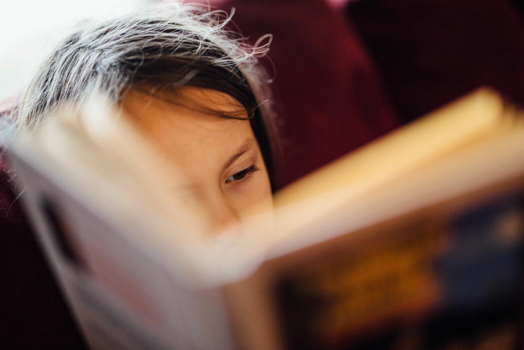 Nettsiden Språkløyper skal gi ideer til hvordan lærere kan arbeide med leseutfordringer elevene møter i alle fag.