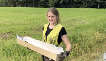 Astrid Kviseth bærer sverdet forsiktig vekk fra feltet. Nå skal det undersøkes videre.