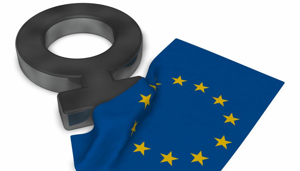 Flere studier viser at EU nå ligger i forkant av utviklingen med lover mot seksuell trakassering, intimbilder på nett og hevnporno.