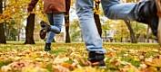 Vil vite mer om unge samers psykiske helse