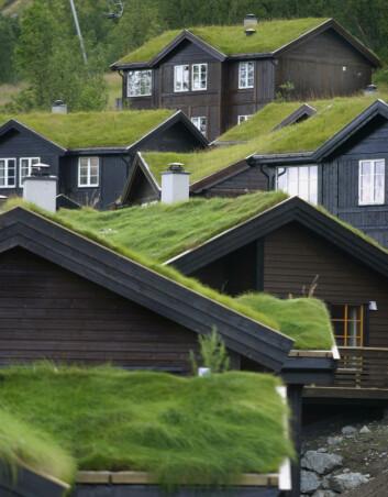 Det spartanske hyttelivet er i ferd med å bli historie. I dag er norske hytter større enn hus. (Foto: Sigmund Krøvel-Velle/Samfoto)