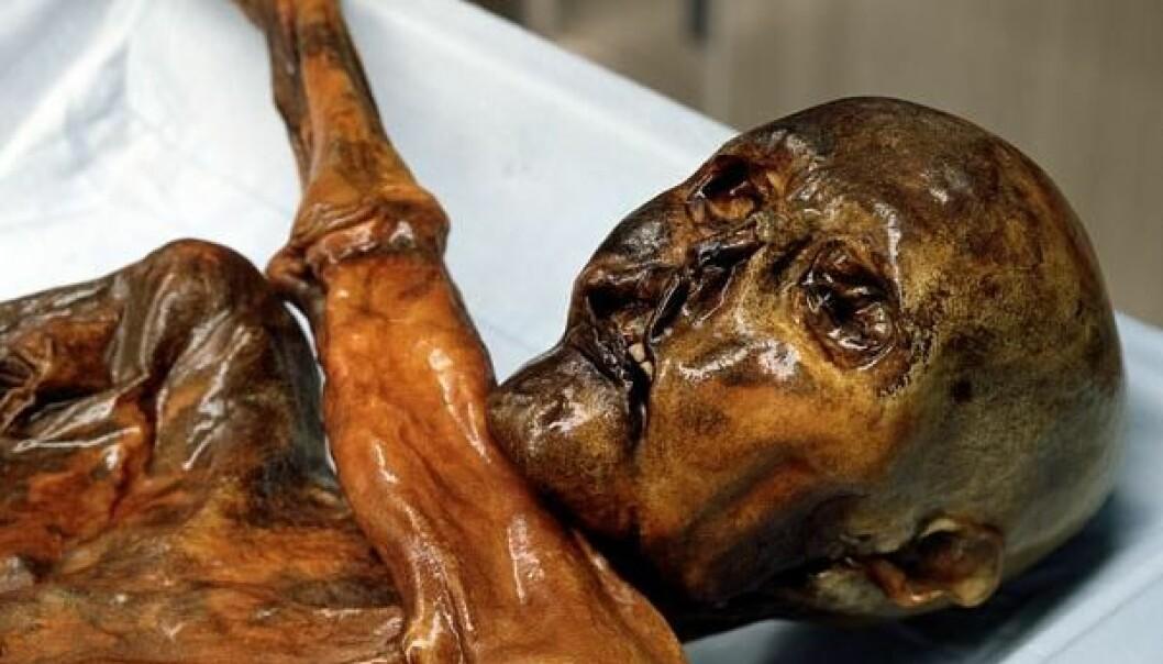 Fant verdens eldste blod på Ötzi