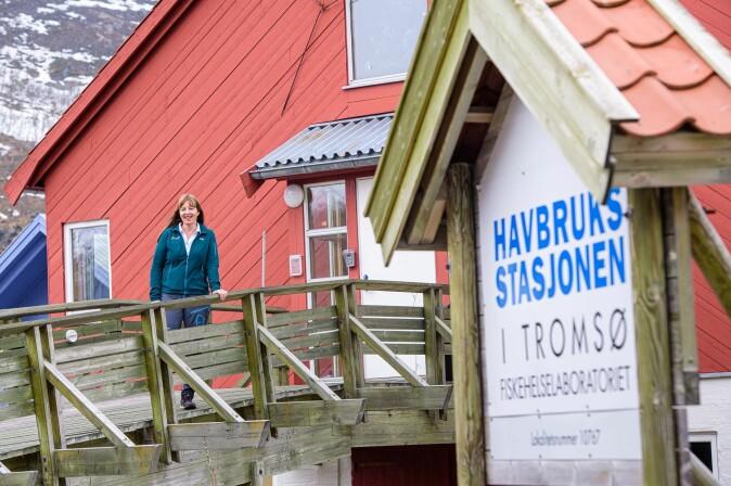 Fiskehelselaboratoriet på Havbruksstasjonen i Tromsø er en viktig samarbeidspartner for Mette Breiland. Det er Nofima som eier Havbruksstasjonen sammen med Universitetet i Tromsø – med halvparten hver.