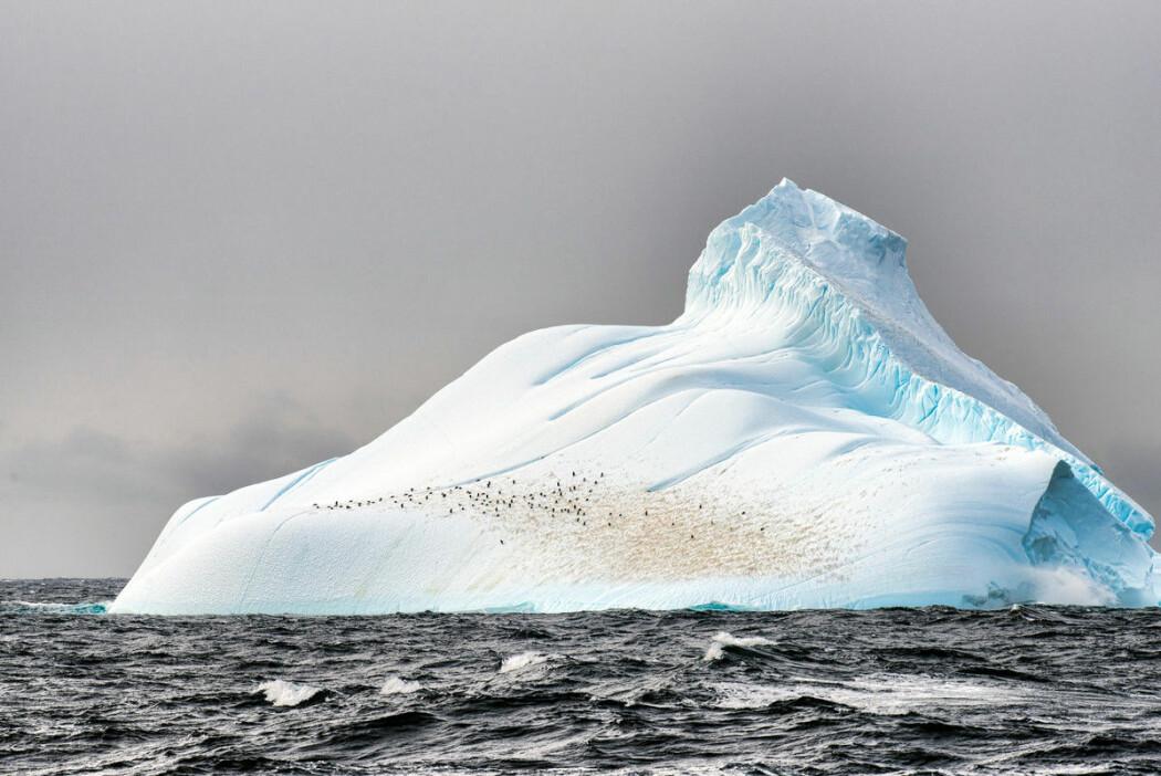 Forskere hevder at det er en felles årsak til samtidig nedkjøling av is og sjø: Nedgang i CO2-konsentrasjonen i atmosfæren.