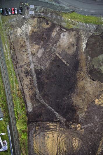 De svarte områdene i utgravningsfeltet er kulturlag fra tunet på gården Vik ved Trondheim. (Trykk på forstørrelsesglasset for større bilde) (Foto: NTNU)