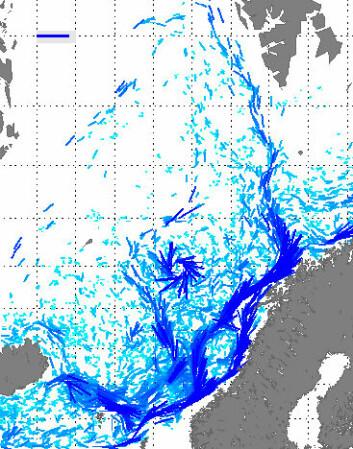 Forskerne har beregnet mer nøyaktig hvor Den norske atlanterhavsstrømmen går. De oppdaget også en permanent virvel med klokka utenfor Lofoten. (Illustrasjon: Poleward)