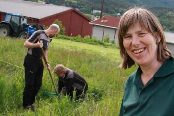 - Bruk av grønnmassen fra grønngjødsel til biogassproduksjon, og bruk av biorest som gjødsel i kornår, vil være mest nitrogeneffektivt, sier seniorforsker Sissel Hansen. (Foto: Anita Land)