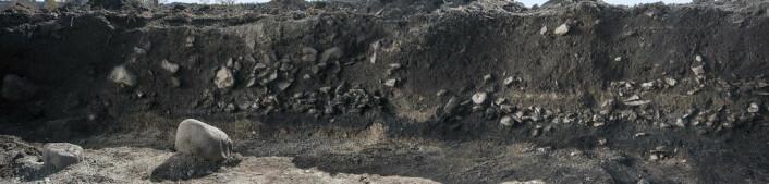 Steinlaget i denne profilen er bryggestein og lagene mellom er kulturlag. (Trykk på forstørrelsesglasset for større bilde) (Foto: Åge Hojem)