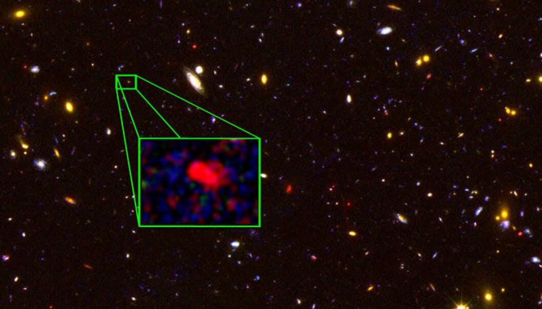 Galaksen z8 GND 5296 er den eldste galaksen som hittil er bekreftet gjennom spektroskopiske metoder. Bildet er basert på data fra romteleskopet Hubble og nesten hvert lysende punkt er en galakse. Den rødlige z8 GND 5296 er forstørret. (Illustrasjon: V. Tilvi (Texas A&M), S. Finkelstein (UT Austin), the CANDELS team og HST/NASA)