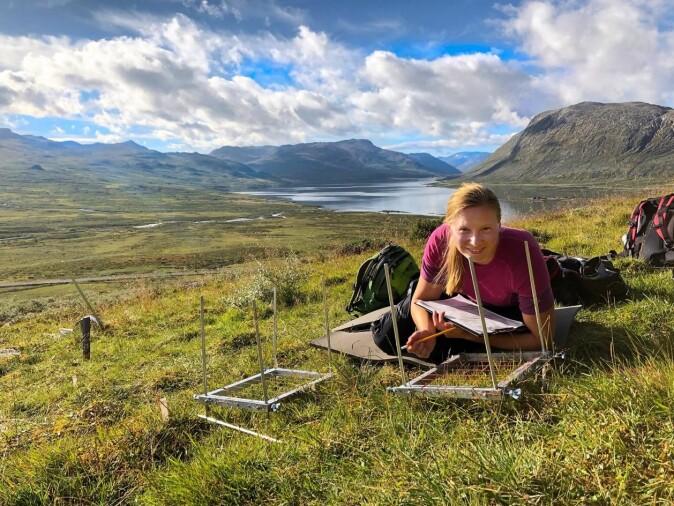 FLYTTAR PLANTER: Stipendiat Ragnhild Gya analyserer vegetasjon. – Dette er på eit oppfølgingsprosjekt etter prosjektet artikkelen er basert på. Vi fant jo ut at artar frå låglandet som sprer seg til fjellet virkar negativt på fjellplantene. Dette inspirerte eit nytt prosjekt der vi ser på effektane av desse plantene. Vi flyttar dei til fjells og ser kva som skjer, seier Vigdis Vandvik.