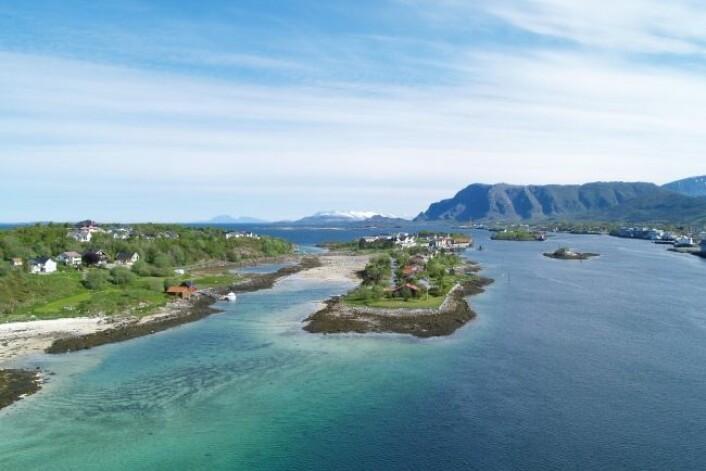 Her er strandflaten utenfor Herøy i Nordland. (Foto: Halfdan Carstens)