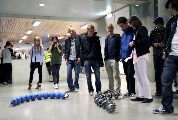 Kybernetisk slanger vekker oppmerksomhet hos en gruppe ungdommer ved å snirkle seg rundt på gulvet mellom føttene deres. (Foto: Kristina Jones, NTNU